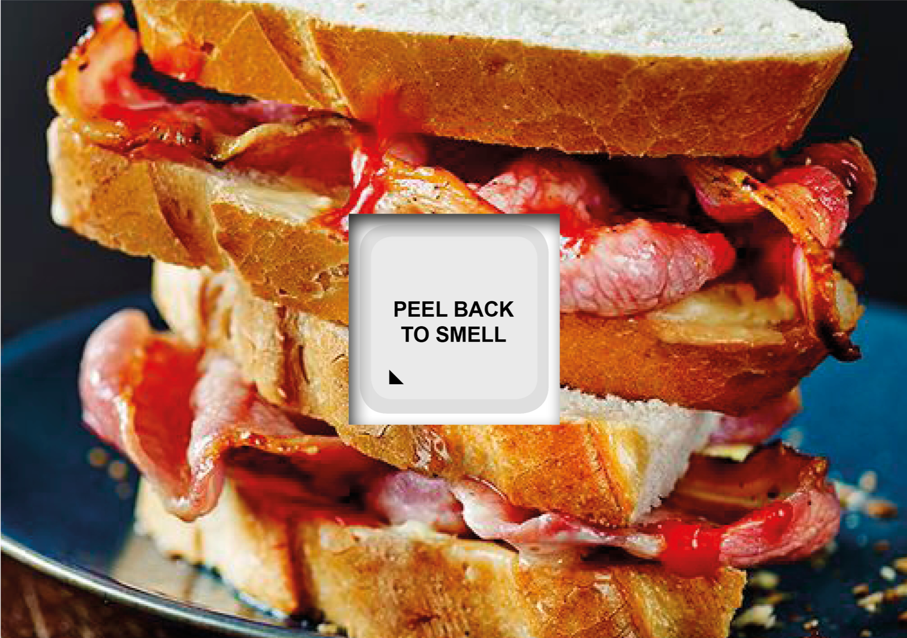 bacon wap leaflet